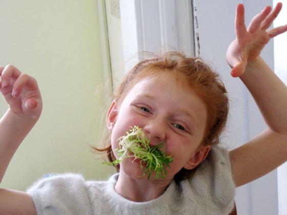 lettuce face