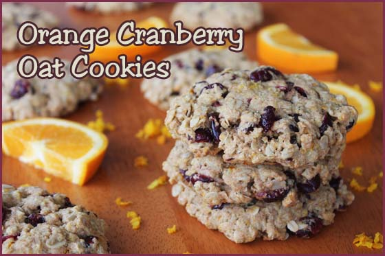 orange cranberry oat cookies